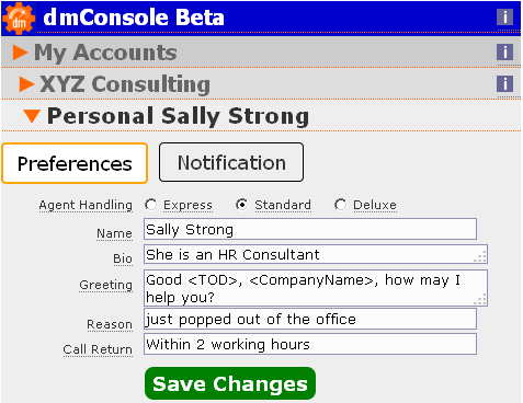 A screengrab of dmConsole preferences